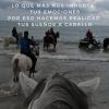 Rutas ecuestres: Field&Horse en la Revista Galope Digital!