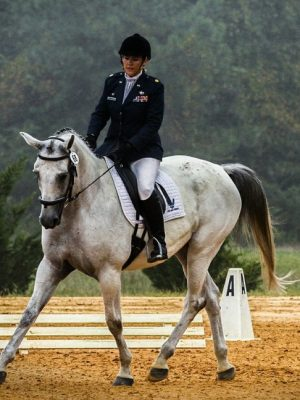 horse-573770_1280-1024x648